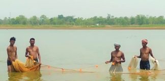 Villagers from Ambagarh Chowki prepare to catch fish from their dam. (Photo supplied)