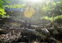 A man stands on the ground where he burned wood and excavated soil to make charcoal | LiCAS.news
